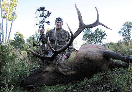 photo-archery-elk