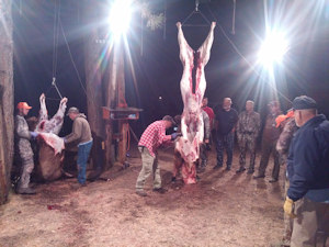 photo-meat-processing